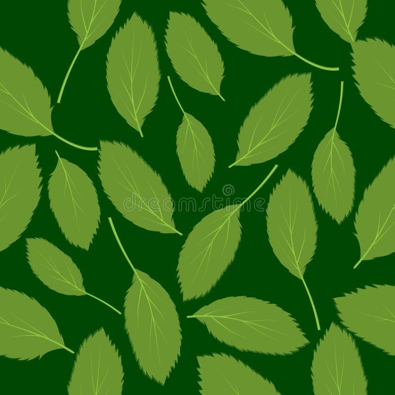 传染媒介例证无缝的样式绿色叶子 库存例证