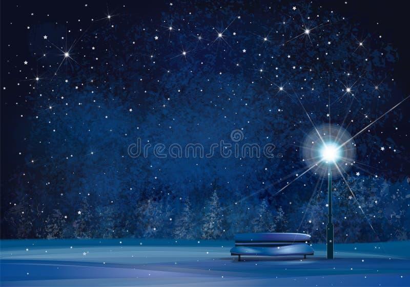 传染媒介冬天夜场面 向量例证