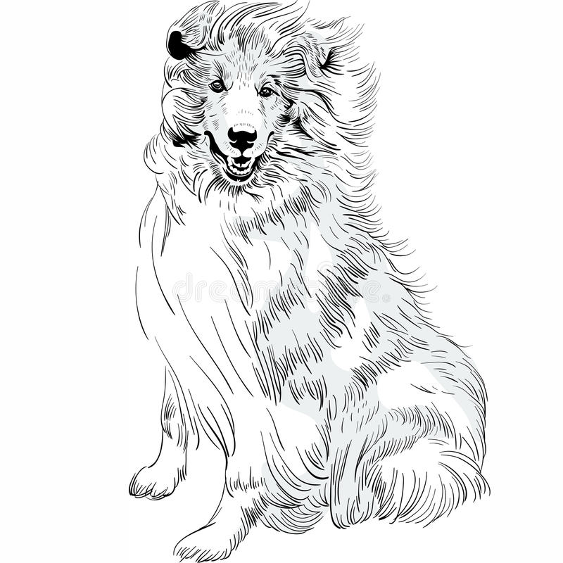 传染媒介剪影狗概略的大牧羊犬品种手图画传染媒介 向量例证