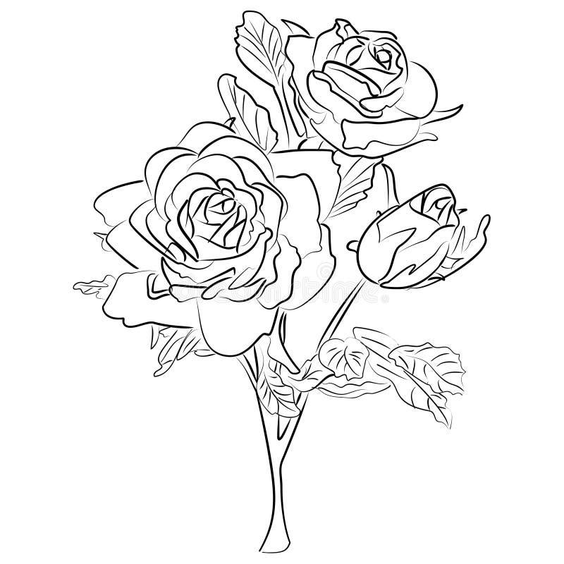 传染媒介剪影黑白玫瑰 库存例证