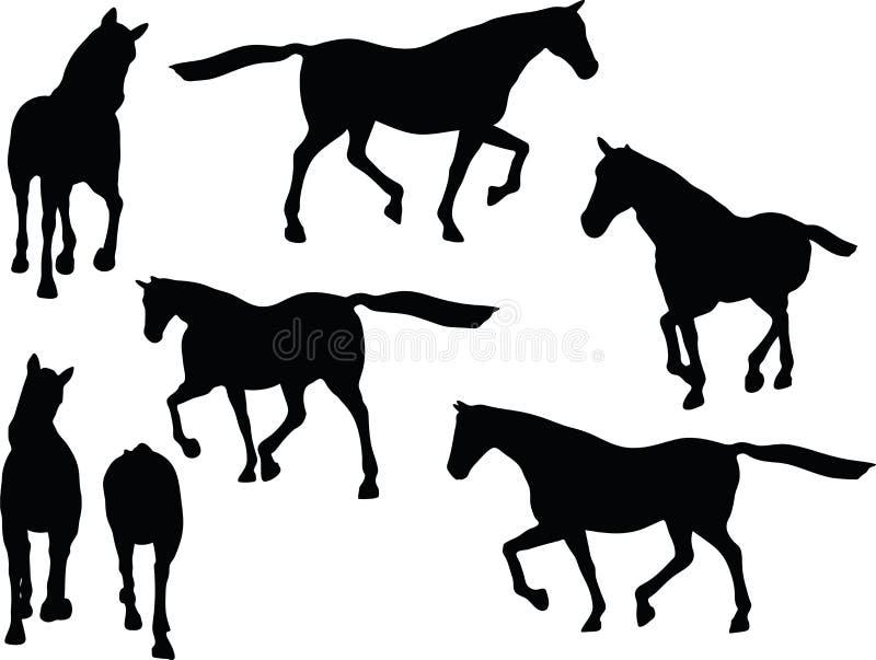 传染媒介图象-在大步慢跑的姿势的马剪影在白色背景 向量例证