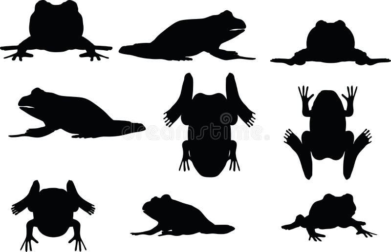 传染媒介图象-在白色背景的青蛙剪影 向量例证
