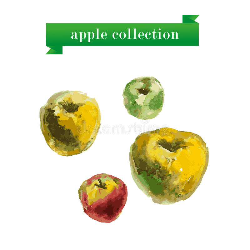 传染媒介套五颜六色的苹果的水彩例证在白色背景的 皇族释放例证