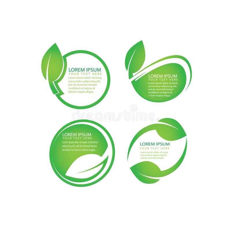传染媒介套有机,绿色叶子,自然,网络设计的生物标签与编辑可能的文本的地方 库存例证