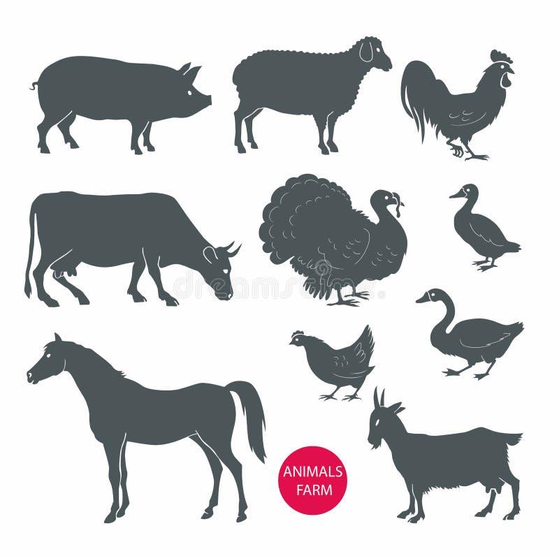 传染媒介套牲口母牛,绵羊,山羊,猪,马 向量例证