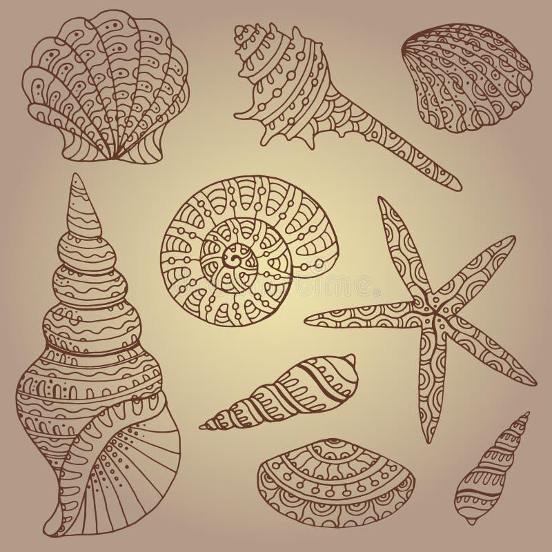 传染媒介套装饰贝壳 向量例证