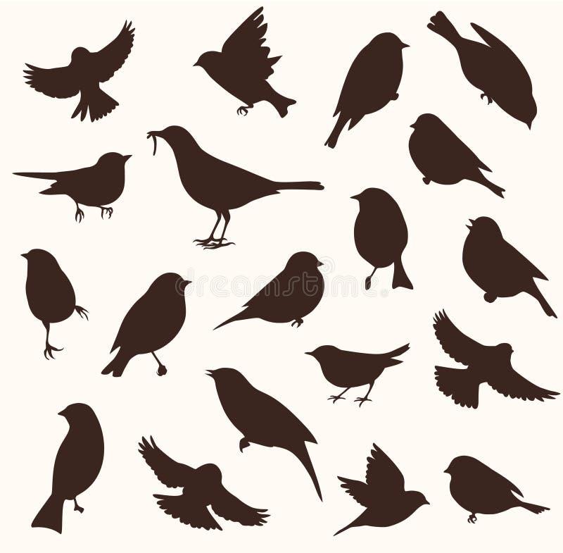 传染媒介套鸟剪影 坐和飞鸟 向量例证