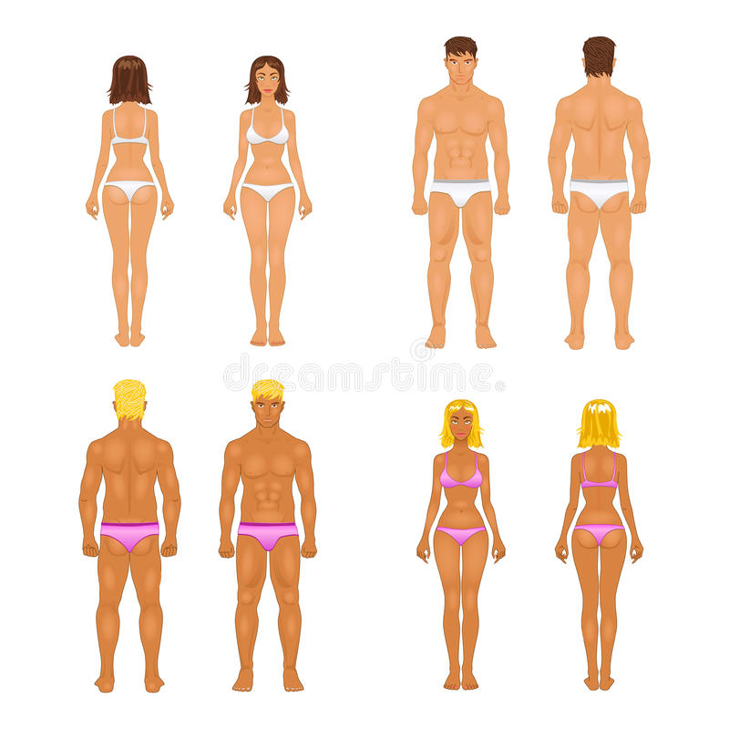 传染媒介少妇和人内衣的 机体 向量例证