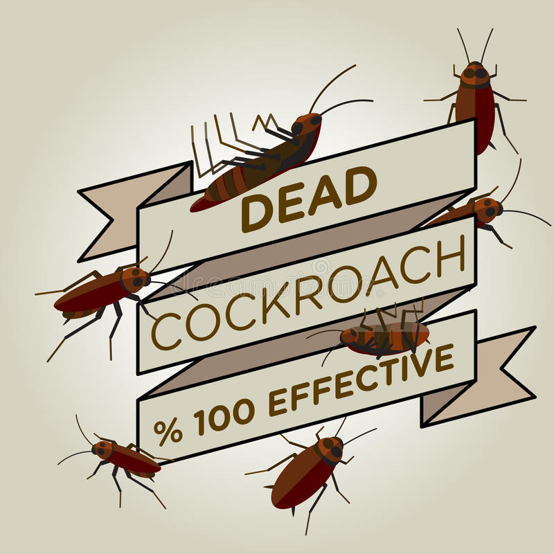 传染媒介平的蟑螂丝带徽章横幅 免版税库存图片