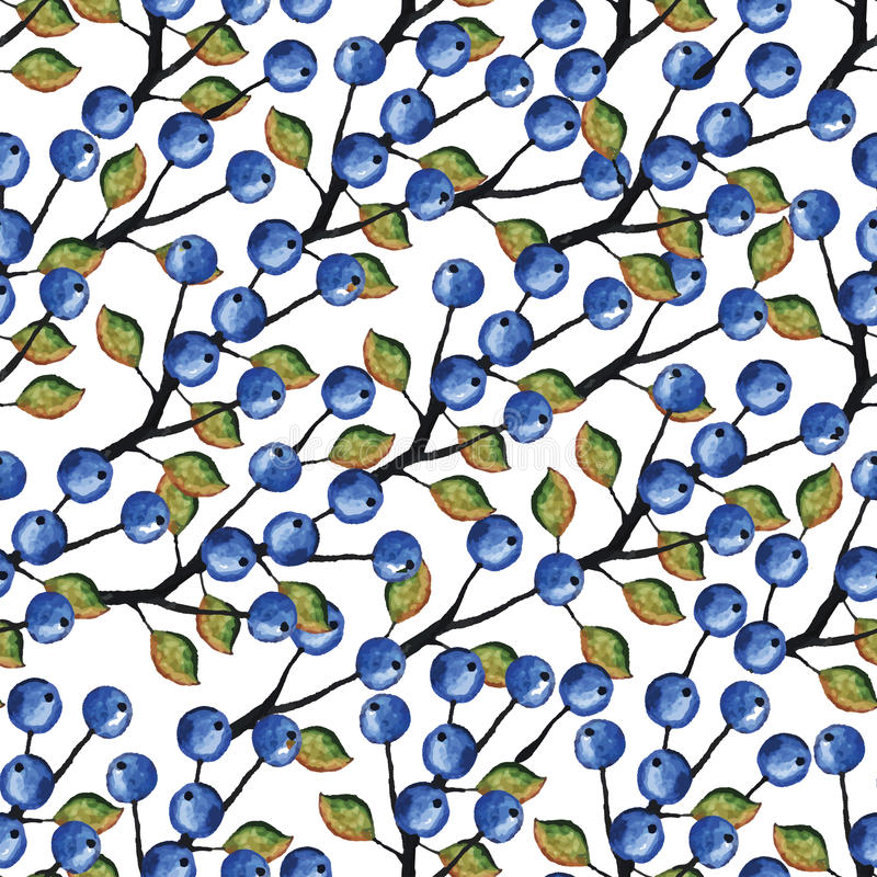 传染媒介水彩无缝蓝莓的分支 皇族释放例证