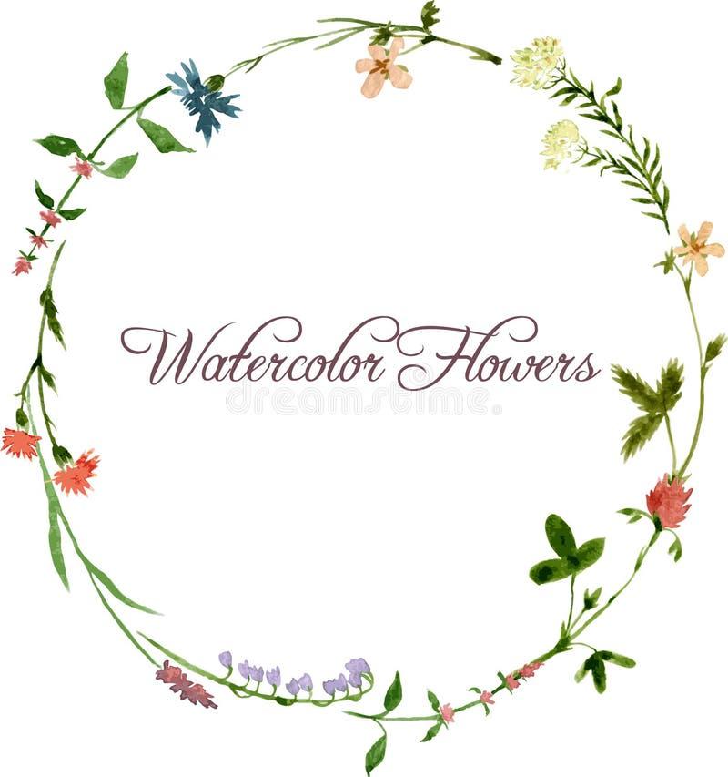传染媒介水彩花卉框架 免版税图库摄影