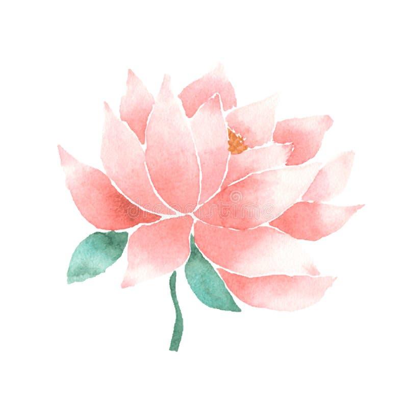 传染媒介水彩莲花桃红色 库存例证