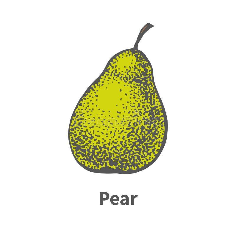 传染媒介手拉的唯一成熟水多的绿色梨 向量例证