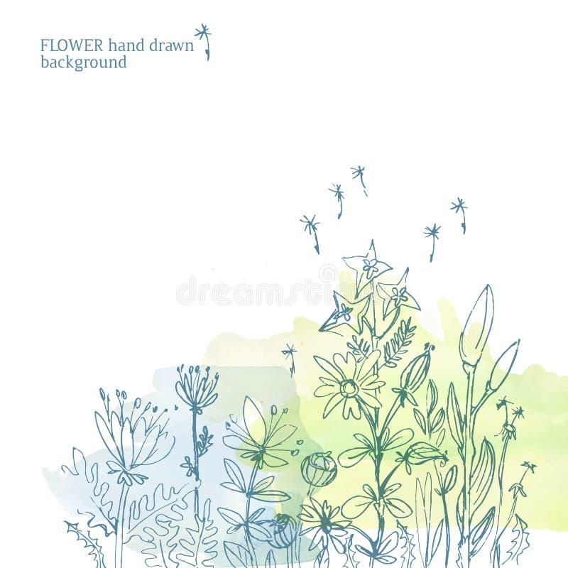传染媒介手拉的概略花卉背景水彩背景 向量例证