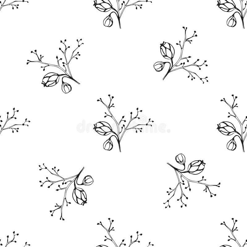 传染媒介无缝的样式用墨水手拉的草本 向量例证