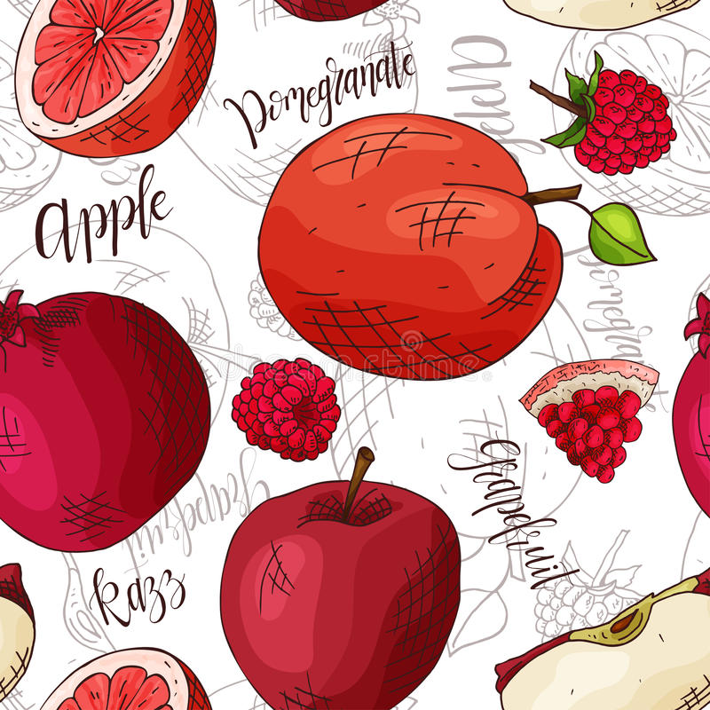 传染媒介无缝的样式用果子 苹果和嘲笑和石榴和葡萄柚背景 手拉的元素 向量例证