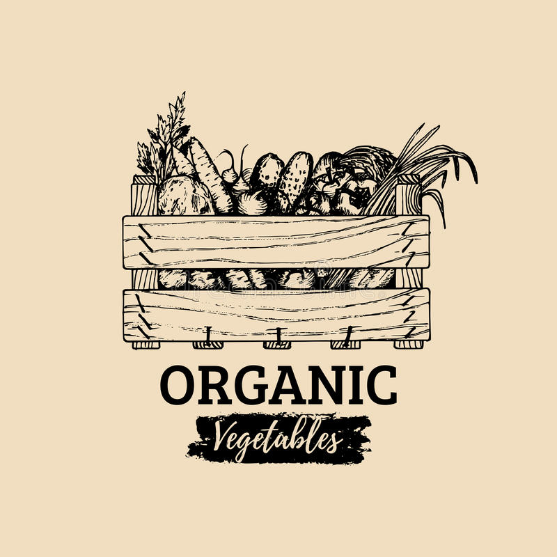 传染媒介有机菜商标 农厂eco产品例证 手速写了有绿色的木箱 皇族释放例证