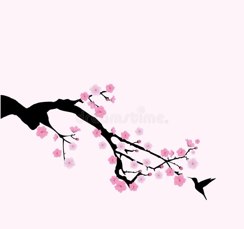 传染媒介樱花 向量例证