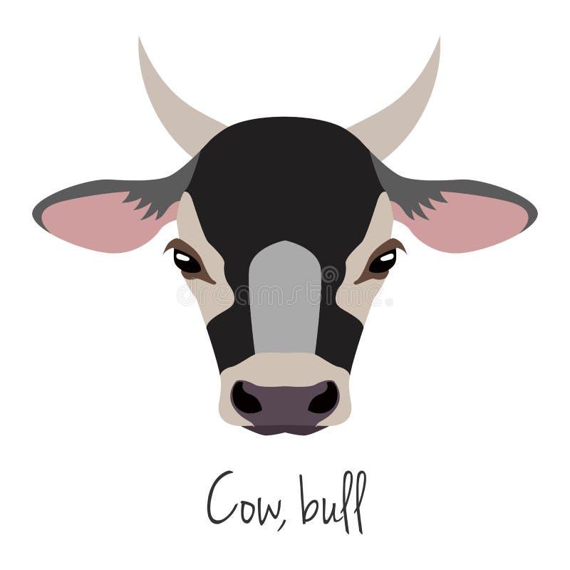 传染媒介母牛,公牛头 7个动物动画片农厂例证系列 平的动画片样式 库存图片