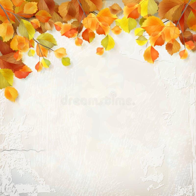 传染媒介秋叶膏药墙壁背景 向量例证