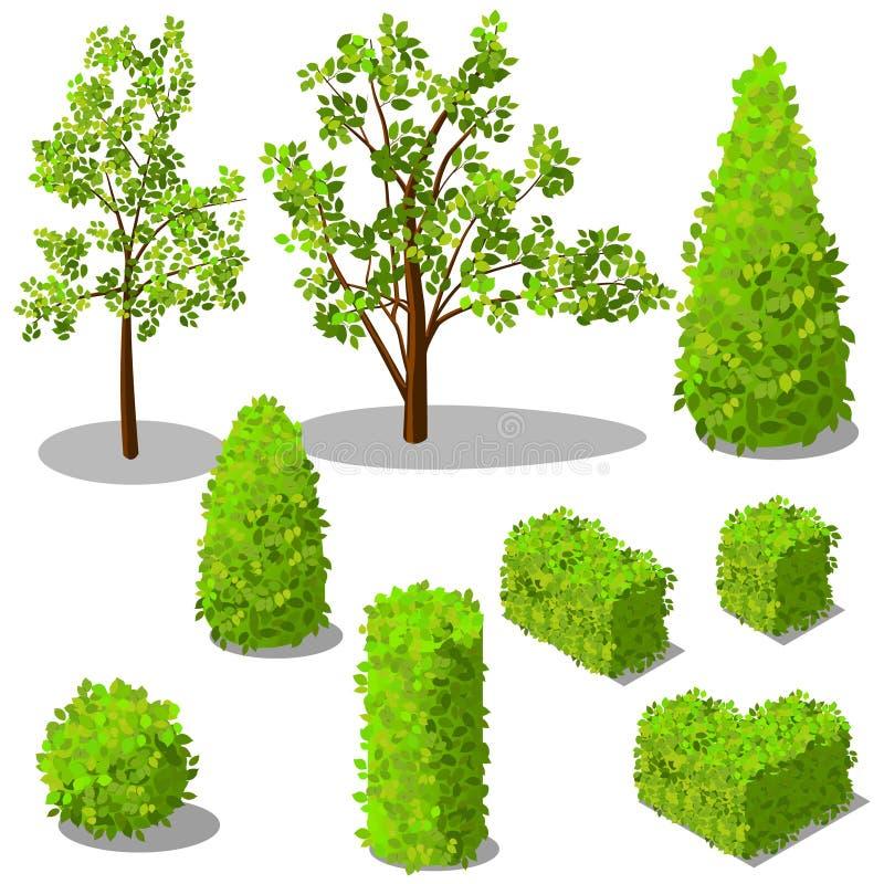 传染媒介等量树和装饰灌木 免版税库存图片