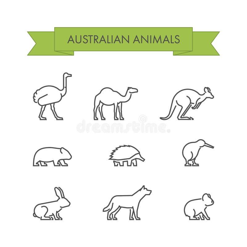 传染媒介线澳大利亚动物套  库存例证