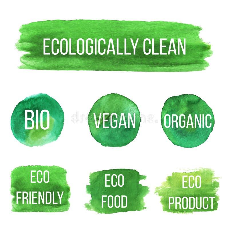 传染媒介自然有机象, eco标签 向量例证