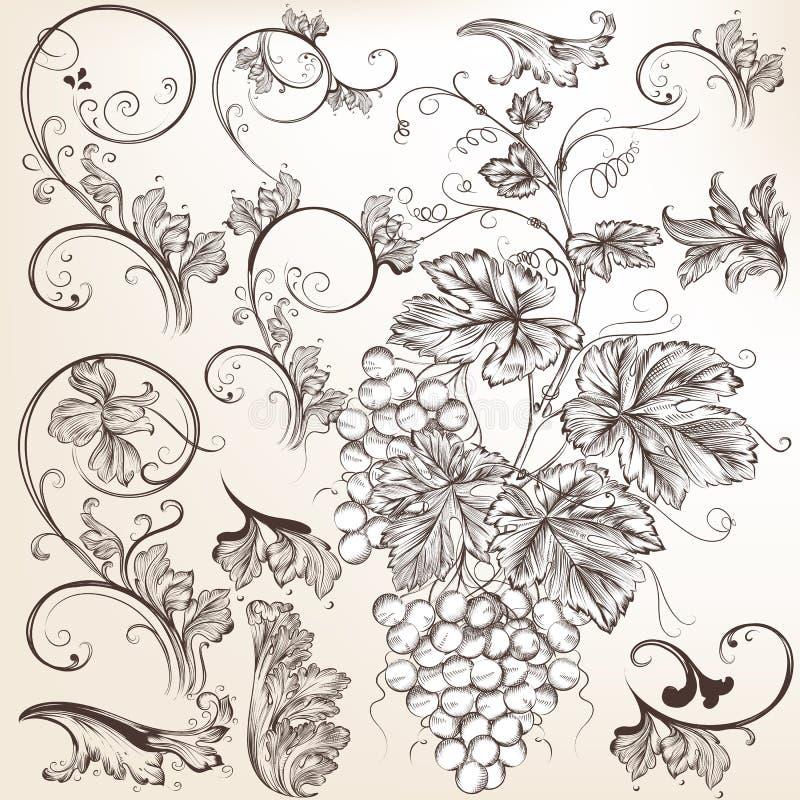 传染媒介花卉装饰元素的汇集 向量例证