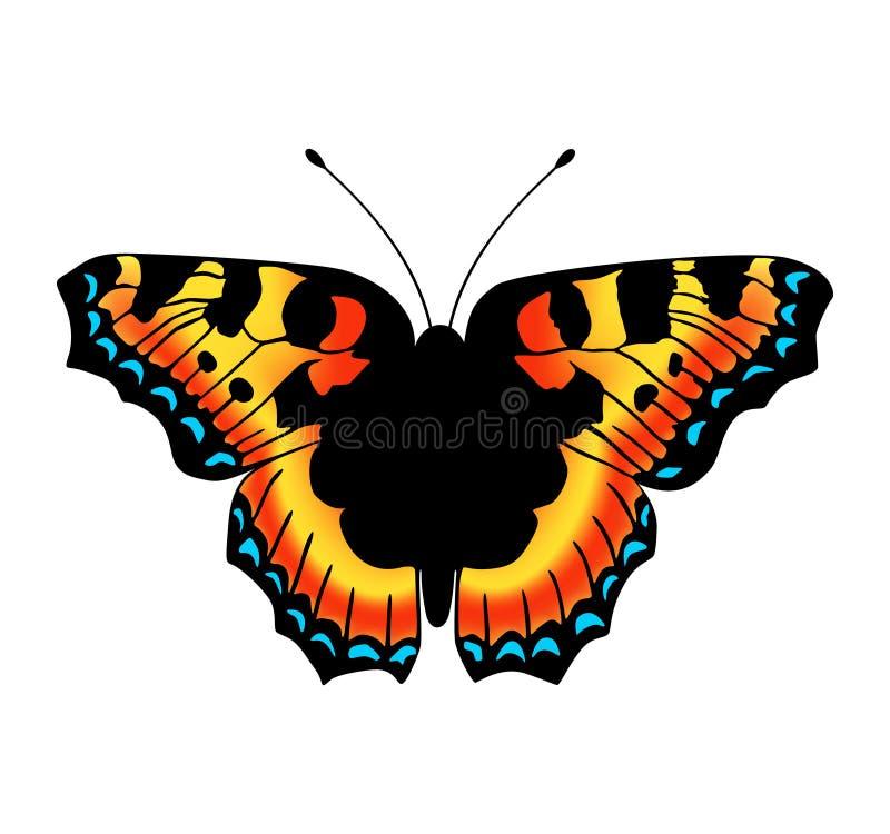 传染媒介蝴蝶 库存图片