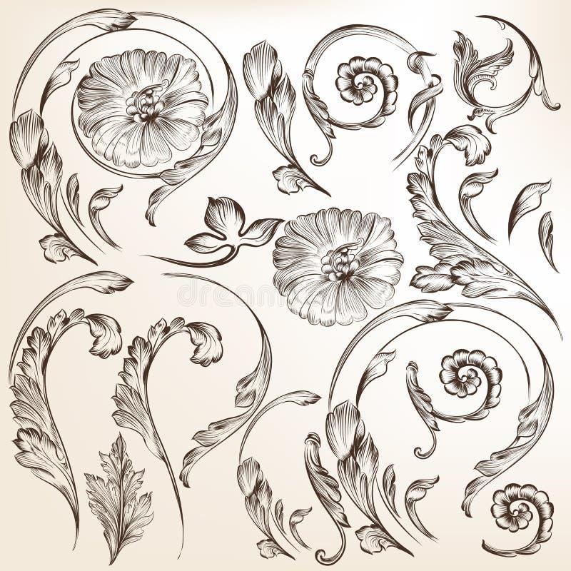 传染媒介装饰漩涡的汇集花卉 皇族释放例证