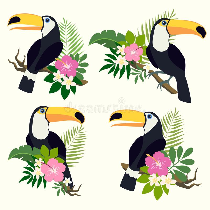 传染媒介设置与toucan 皇族释放例证