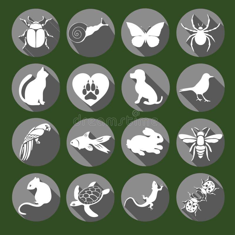 传染媒介集合平的网象动物和昆虫 与长的阴影的白色灰色在互联网的绿色背景,流动 皇族释放例证