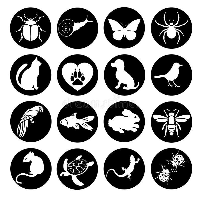 传染媒介集合平的网象动物和昆虫 黑白色互联网,流动apps,接口设计的一个圆的框架 库存例证