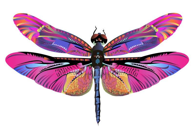 传染媒介颜色艺术蜻蜓自然野生生物 皇族释放例证