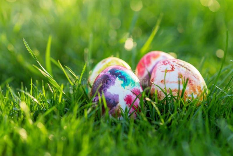 传统上在草掩藏的被绘的复活节彩蛋 库存图片