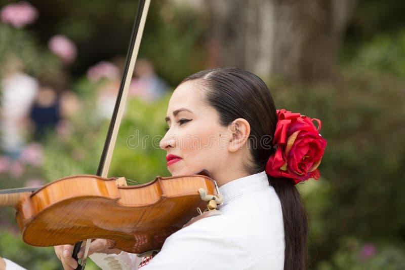 传统墨西哥流浪乐队带演唱婚礼 库存图片