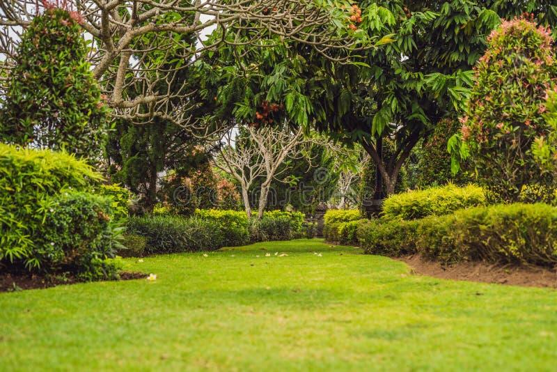传统巴厘语公园,绿色庭院 巴厘岛印度尼西亚 免版税库存图片