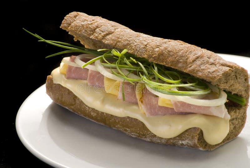 传统意大利三明治用火腿、乳酪和葱在一块白色板材 库存照片