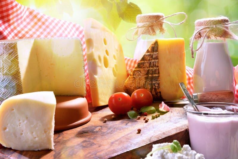 传统手工的乳制品的分类在自然关闭的 免版税库存图片