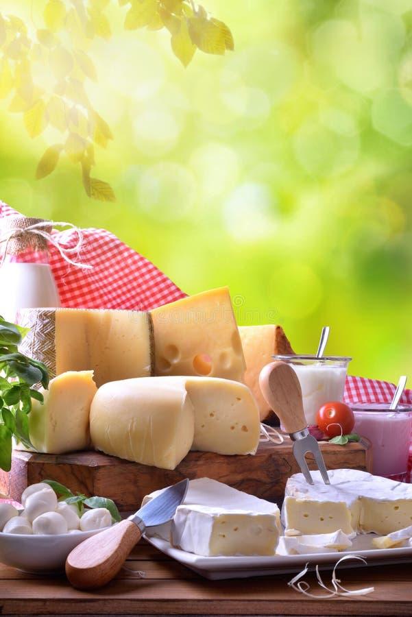 传统手工的乳制品的大分类在自然垂直的 免版税库存照片
