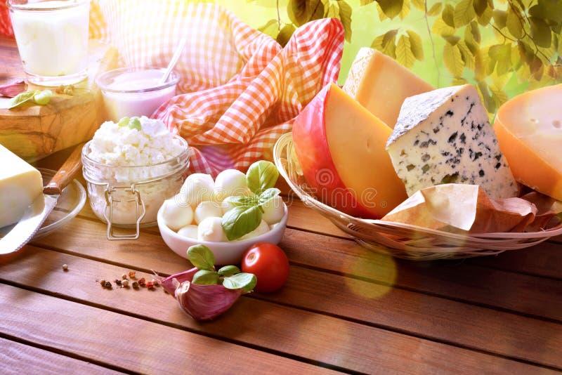 传统手工的乳制品的大分类本质上被举起的 免版税库存图片