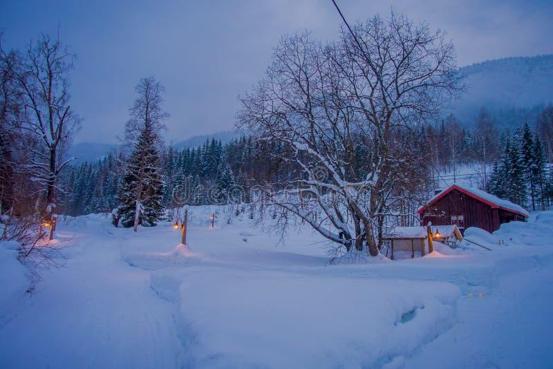 传统木房子惊人的夜视图有雪的在屋顶在惊人的自然背景中,与一些光 库存照片