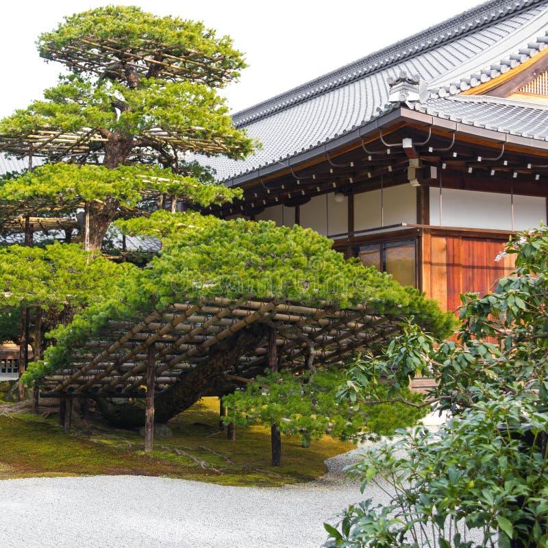 传统环境美化的日本庭院细节在日本 免版税库存照片