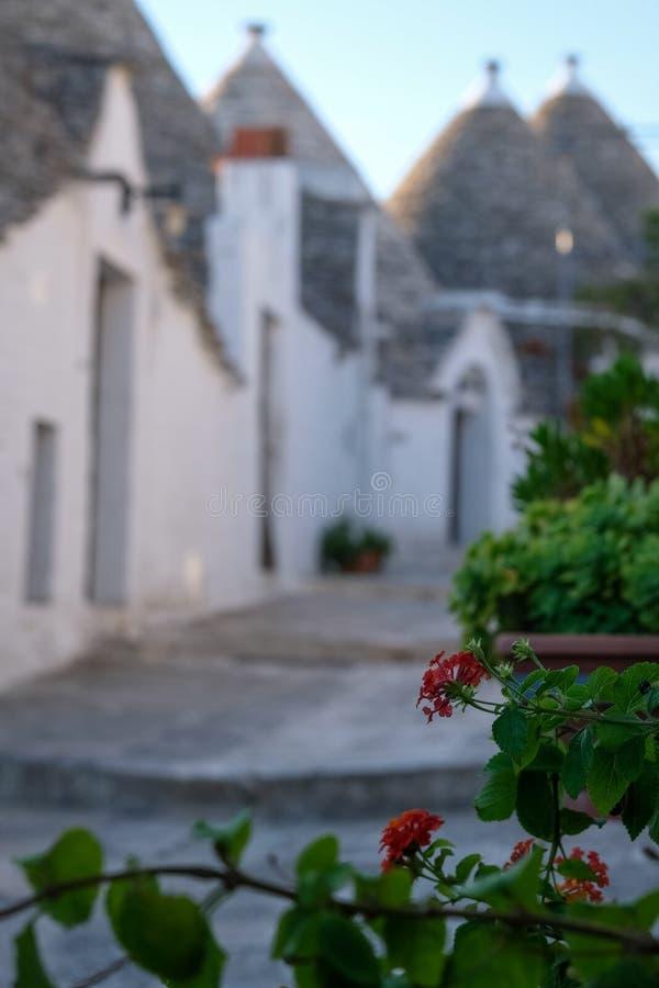传统白色看法在普利亚意大利洗涤了在一条街道上的不用灰泥只用石块构造的trulli房子在阿尔贝罗贝洛Rione蒙蒂地区  图库摄影