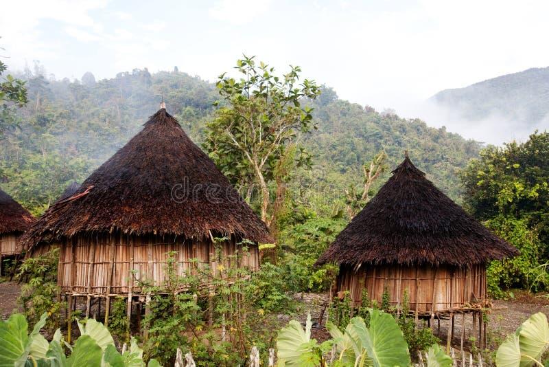 传统的小屋 库存照片