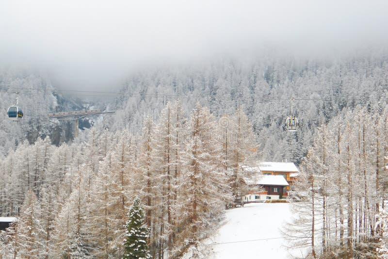传统高山房子在具球果森林里,瑞士滑雪场 图库摄影