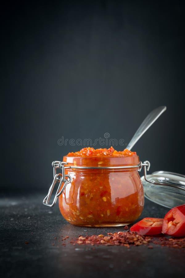 传统adjika辣椒调味汁酱harissa 突尼斯,格鲁吉亚和阿拉伯烹调 免版税库存照片