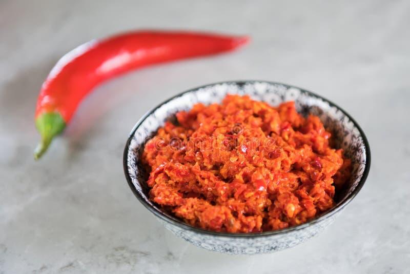 传统Maghrebi辣椒调味汁酱harissa 突尼斯和阿拉伯烹调adjika 图库摄影