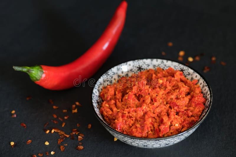 传统Maghrebi辣椒调味汁酱harissa Marocco和阿拉伯烹调 格鲁吉亚adjika 意大利peperoncino sause 图库摄影