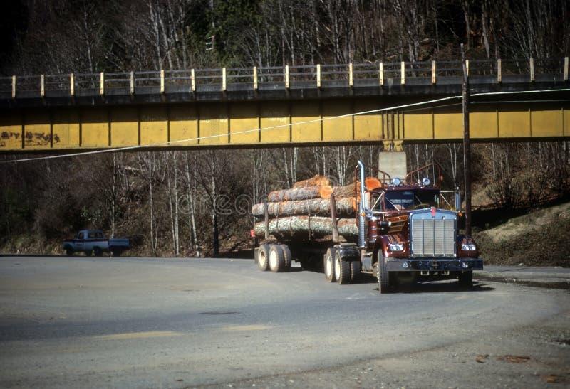 传送木材的记录的卡车到锯木厂, 库存照片